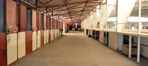 Indoor Stalls at Franktown Meadows