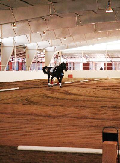 franktown_equestrian_clinics-1