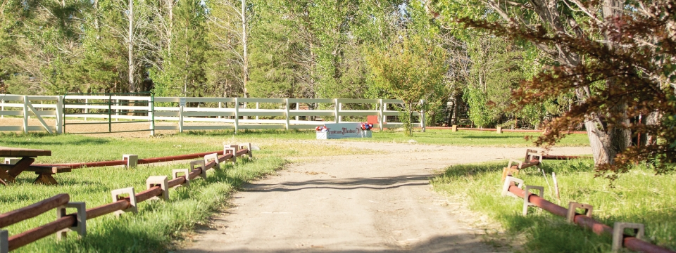 Franktown Meadows A Horse Training And Boarding Facility